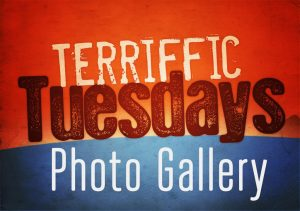 terrific_tuesdays_gallery